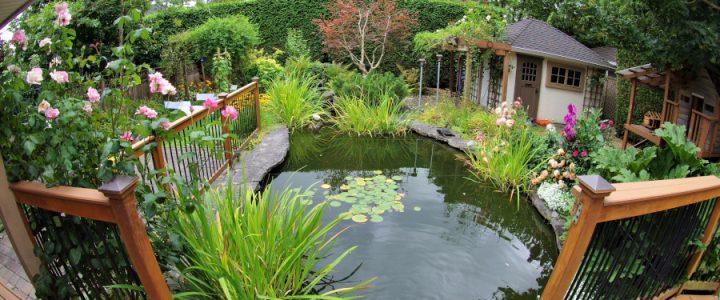 Ako si vytvoriť okrasnú záhradu a čo by v nej nemalo chýbať?